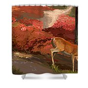 Early Fall Whitetail Shower Curtain