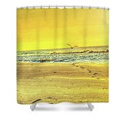 Early Morning Beach Walk Shower Curtain