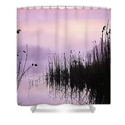 Early Morning By The Pond  Shower Curtain