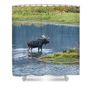 Early Morning Crossing In Grand Teton Shower Curtain