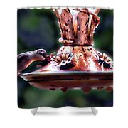 Early Morning Hummer Shower Curtain