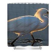 Early Morning Light On Egret Shower Curtain