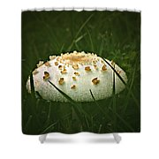 Early Morning Mushroom Shower Curtain