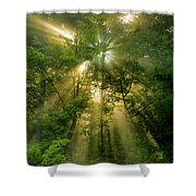 Early Morning Peace Shower Curtain
