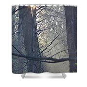 Early Morning Rays Shower Curtain