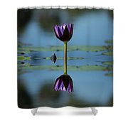 Early Morning Reflection Shower Curtain