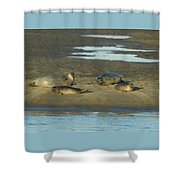 Early Morning Relaxation Shower Curtain