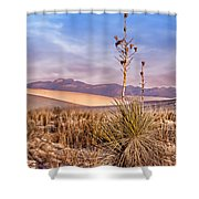 Early Morning Yucca - White Sands - New Mexico Shower Curtain