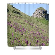 Early Purple Orchids In The Derbyshire Dales Shower Curtain