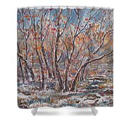 Early Snow. Shower Curtain