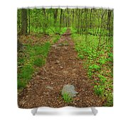 Early Spring In Maryland Shower Curtain