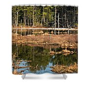 Early Spring Marsh Shower Curtain