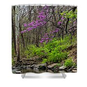 Early Spring On Mill Creek 2 Shower Curtain