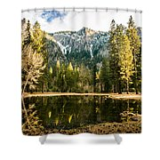 Early Spring Reflections Shower Curtain