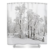 Early Spring Snow Shower Curtain