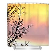 Early Spring Sunset Shower Curtain