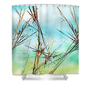 Early Spring Twigs Shower Curtain