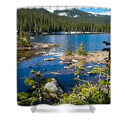 Early Summer At Finch Lake Shower Curtain