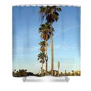 Early Sunday Morning In Daytona Beach  Shower Curtain