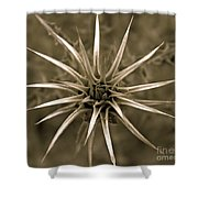 Early Thistle Shower Curtain
