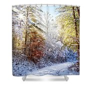 Early Winter's Walk Shower Curtain