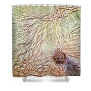 Earth Art 9495 Shower Curtain