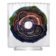 Earth Slice Shower Curtain