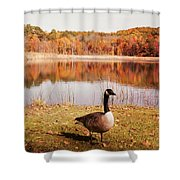 Earth Tone Autumn Pond Goose Shower Curtain