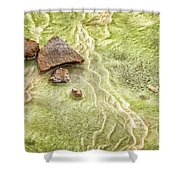 Earthart 9512 Shower Curtain