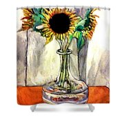Earthly Limitations Shower Curtain