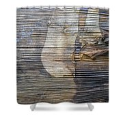 Earthquake Distortion   Shower Curtain