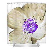 Earthy Brown And Purple Poppy Shower Curtain