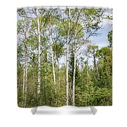 East Jordan 9 Shower Curtain