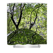 East West Gate 3 Shower Curtain