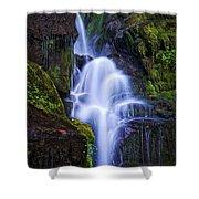 Eastatoe Falls Detail #8 Shower Curtain