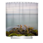 Eastbourne Sovereign Harbour Shower Curtain
