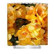 Easter Beauties Shower Curtain