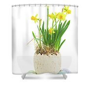 Easter Eggs Hunt Shower Curtain