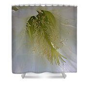 Easter Lily Cactus Shower Curtain
