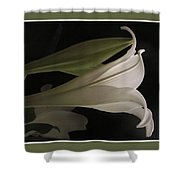 Easter Lily Card Shower Curtain
