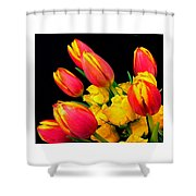 Easter Tulips And Roses Shower Curtain