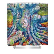 Eastern Beech Tree Shower Curtain