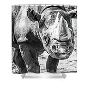 Eastern Black Rhinoceros Shower Curtain
