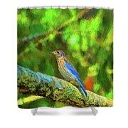 Eastern Blue Bird With Flair Shower Curtain