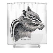 Eastern Chipmunk Shower Curtain