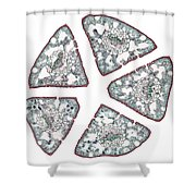Eastern White Pine Needles, Lm Shower Curtain