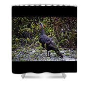 Eastern Wild Turkey Shower Curtain