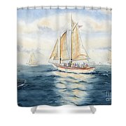 Eastwind Shower Curtain