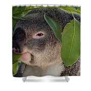 Eat Your Greens Shower Curtain by Mike  Dawson