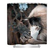 Eating Monkey Shower Curtain